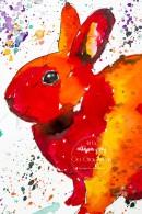 bunny-3-copy