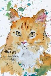 Custom Cat 2-1 - Copy