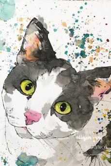 Custom Cat 2-7 - Copy