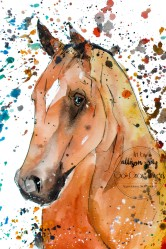 Horse 4 - Copy