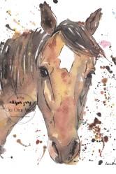 Horse 5 - Copy